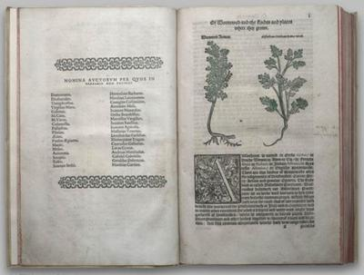 Turnerherbal1568