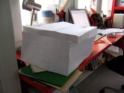Papertrunkcutlid
